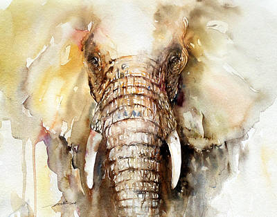 Amber Elephant Art Print