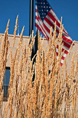 Photograph - Amber Waves Of Grain And Flag by Valerie Garner