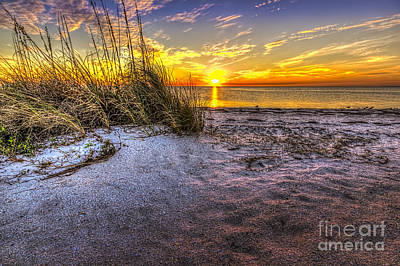 Sea Grass Photograph - Ambience Of The Gulf by Marvin Spates