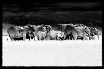 Amboseli Herd With Egret Art Print by Mike Gaudaur