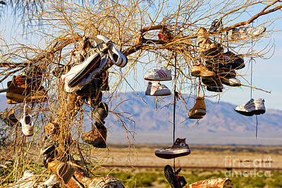 Photograph - Amboy Branch Of Shoes By Diana Sainz by Diana Raquel Sainz