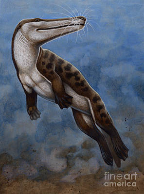 Otter Digital Art - Ambulocetus Natans, An Early Cetacean by H. Kyoht Luterman