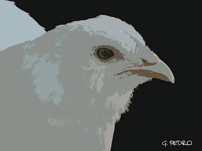 Painting - Ameraucana Chick In White by George Pedro