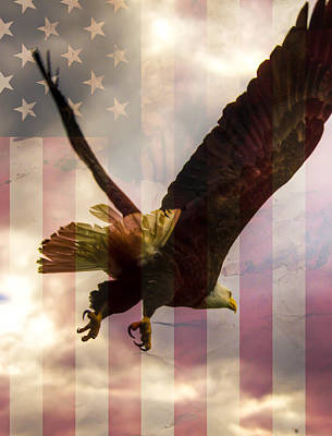 American Bald Eagle In Flight Wtih Flag Art Print