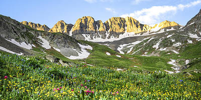 Fourteeners Photograph - American Basin Wildflowers by Aaron Spong