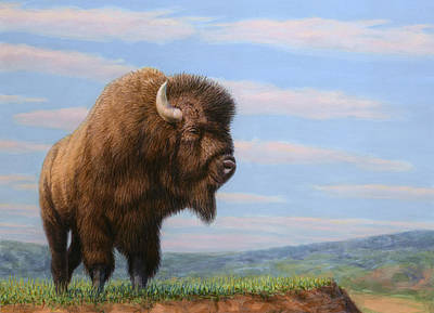 Bison Drawing - American Bison by James W Johnson