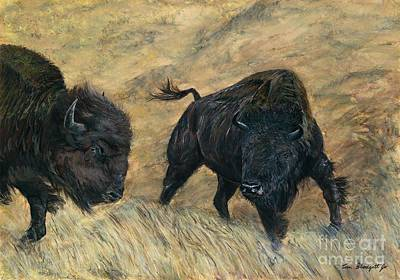 Bison Watercolor Painting - American Bison by Tom Blodgett Jr