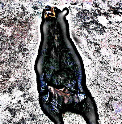 Too Cute For Words - American Black Bear by April Patterson
