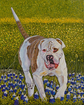Bulldog Oil Painting - American Bulldog Original Oil Painting 10x8in by Manuel Lopez