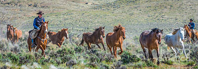 Working Cowboy Photograph - American Cowboy Wild Horse Roundup by Phillip Rubino