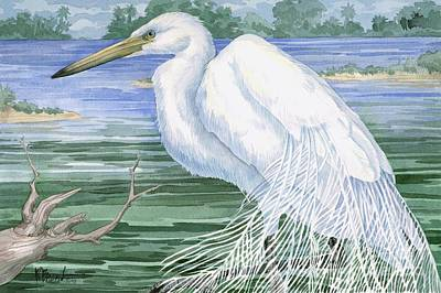 Blue-gray Painting - American Egret by Paul Brent