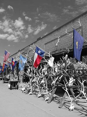 Colorado State Flag Photograph - American Flag Colorado Flag Texas Flag And Antlers by Dan Sproul