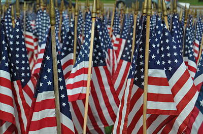 Photograph - American Flags by Staci Bigelow