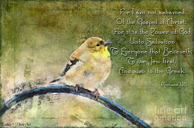 Photograph - American Goldfinch Gazes Upward - Digital Paint 3 With Verse by Debbie Portwood