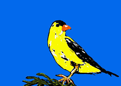 American Goldfinch Original by Paul Sutcliffe