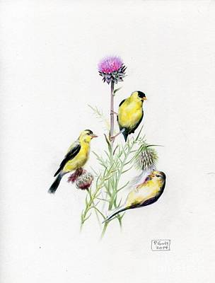 Painting - American Goldfinches by Penrith Goff