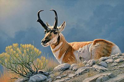 Pronghorn Painting - American Original-pronhorn by Paul Krapf