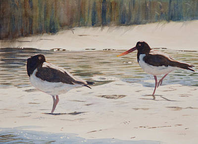 Painting - American Oystercatchers by Christopher Reid
