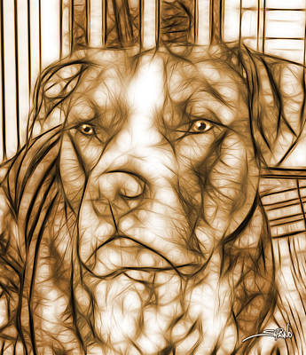 Digital Art - American Pit Bull - Sepia Sketch  by Michael Spano