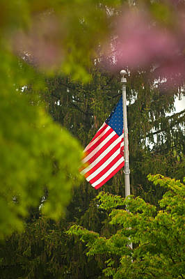 Photograph - American Pride Framed By Nature by Paul Mangold