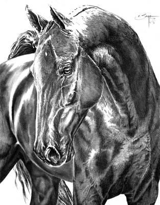 American Saddlebred Horse Art Print