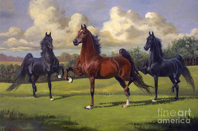 Landmarks Royalty-Free and Rights-Managed Images - American Saddlebred Stallions by Jeanne Newton Schoborg