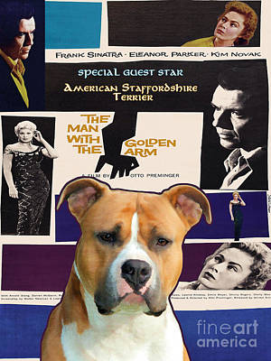 Painting - American Staffordshire Terrier Art Canvas Print - The Man With The Golden Arm Movie Poster by Sandra Sij