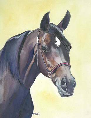 Forelock Painting - Amira by Karen Harrod