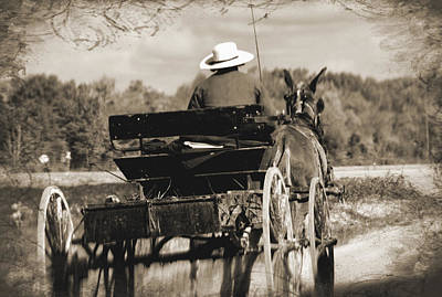 Photograph - Amish Backroad by TnBackroadsPhotos