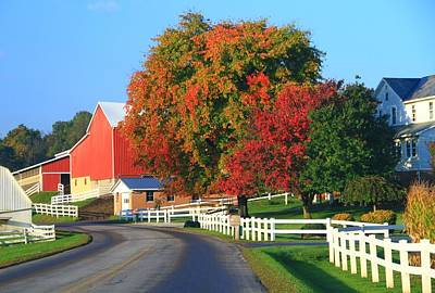Of Autumn Photograph - Amish Barn In Autumn by Dan Sproul