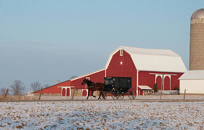 Amish Photograph - Amish Buggy And Red Barn by David Arment