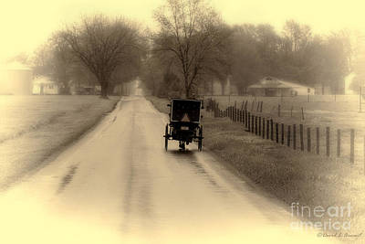 Amish Photograph - Amish Buggy Early Spring by David Arment