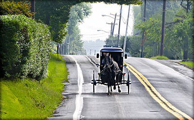 Amish Buggy In Lancaster County Pa. Art Print