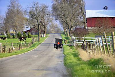 Amish Photograph - Amish Buggy May 2014 by David Arment
