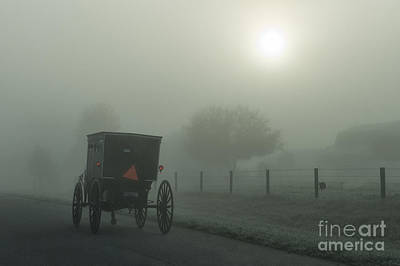 Amish Photograph - Amish Buggy On Frosty Morning by David Arment