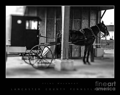 Amish Buggy Parking Art Print