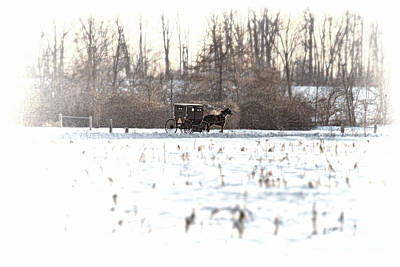 Photograph - Amish Buggy Shipshewana Feb 2014 by David Arment
