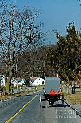 Amish Buggy Photograph - Amish Buggy by Skip Willits