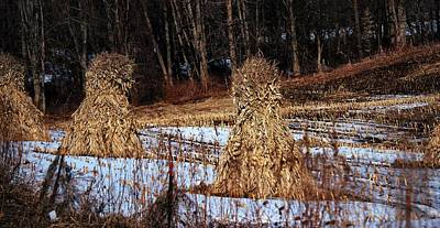Amish Family Photograph - Amish Corn Shocks by R A W M