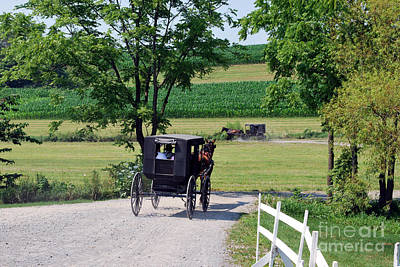 Meadow Photograph - Amish Country 27 by Pittsburgh Photo Company