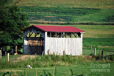 Amish Photograph - Amish Country 34 by Pittsburgh Photo Company
