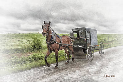 Amish Country Art Print