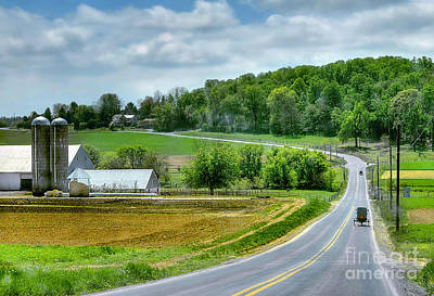 Amish Countryside Art Print