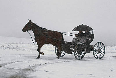 Photograph - Amish Drive-by by Gene Walls