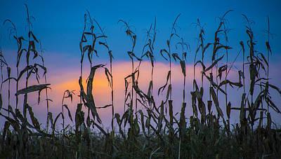 Amish End Of Harvest Art Print by Bruce Neumann