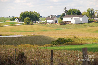 Photograph - Amish Farm 1 by Mary Carol Story
