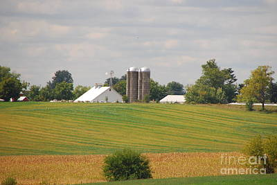 Photograph - Amish Farm 2 by Mary Carol Story