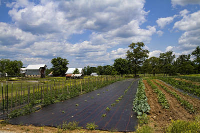 Ethridge Photograph - Amish Farm And Garden by Kathy Clark