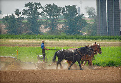 Photograph - Amish Farmer And His Working Horses by Dyle   Warren
