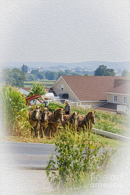 Harvesting Digital Art - Amish Farmer And Son by Patricia Hofmeester